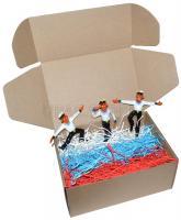 Коробка картонная 22*16*10 см_1